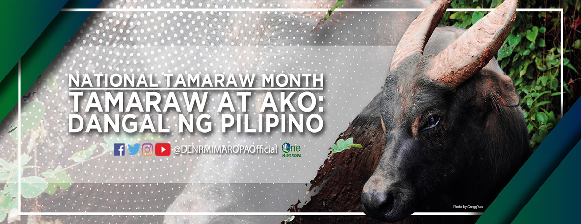 National Tamarraw Month 2019